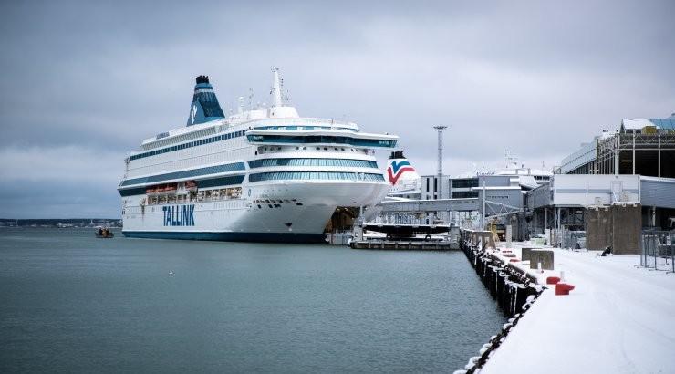 Tallink tähistab riigi sünnipäeva haruldase udupasunakooriga