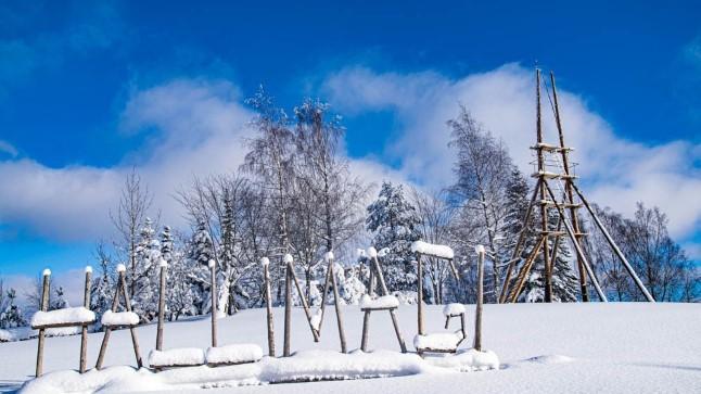 """72aastane mees ehitab ihuüksi Haanjamaale Hallimäe tippu vaatetorni: """"Siinsed mäetipud on ilusad!"""""""