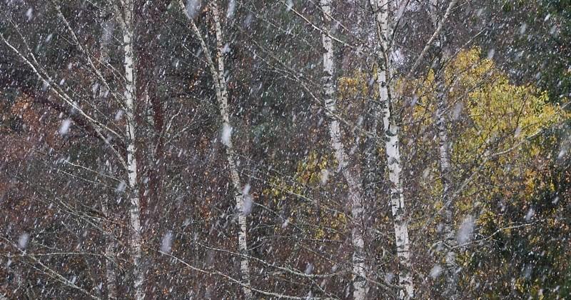 ILM: Pühapäev 18.10 – Sajab vihma ja lörtsi, sooja kuni 8°C