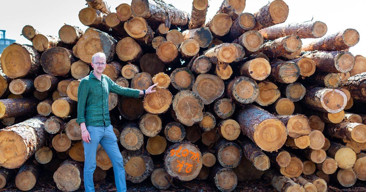 Eesti üks suuremaid puidutööstusi haub Valgevenes tehaseplaane