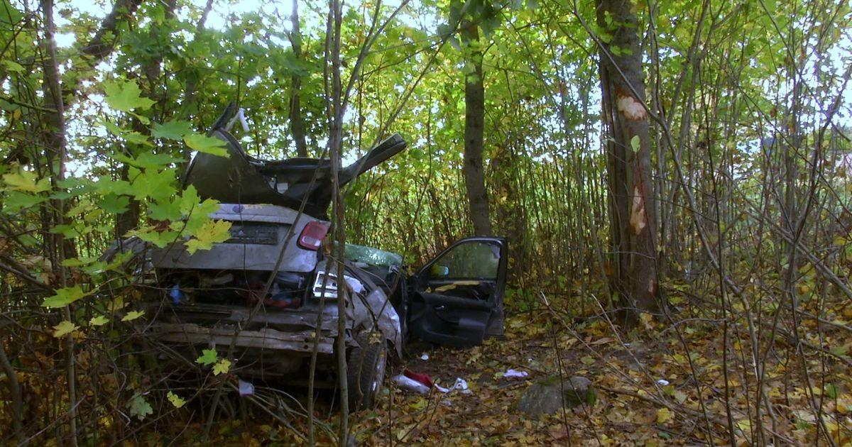 Reporter: Elva vallas hukkus sõiduautoga teelt välja sõitnud autojuht