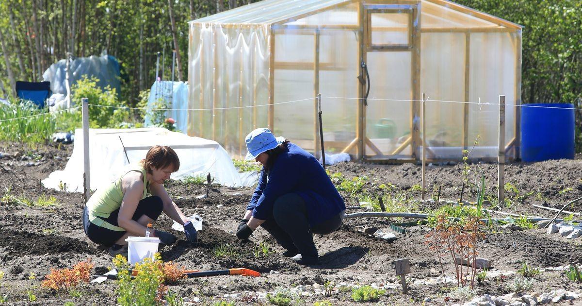 Linn annab aiapidajatele Ihaste teel maad juurde