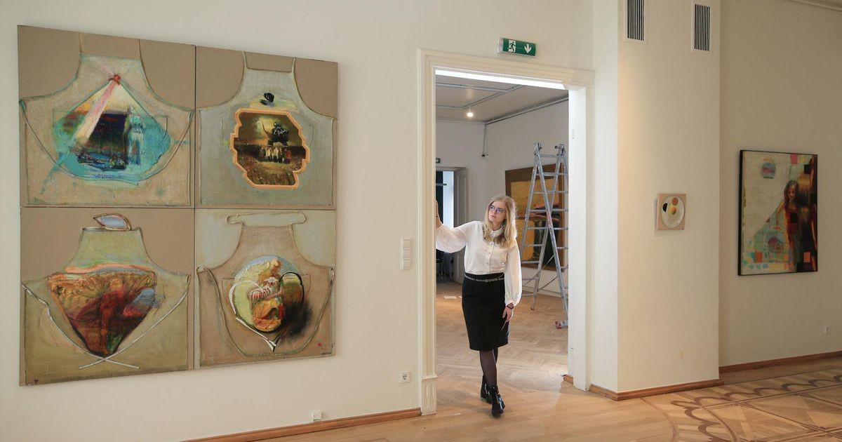 Ametisse määratud direktor rõhub muuseumi väiksusele