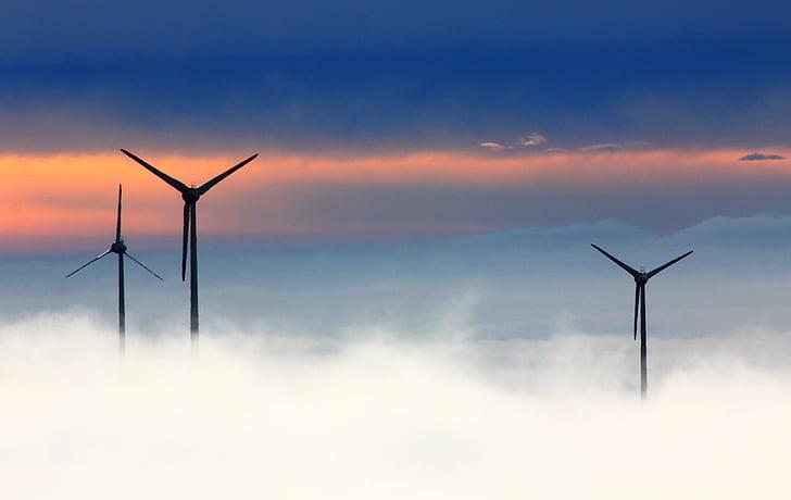 Uuring: roheenergia soodustab kliimamuutusi, hävitab elurikkust ja teeb vaesed vaesemaks