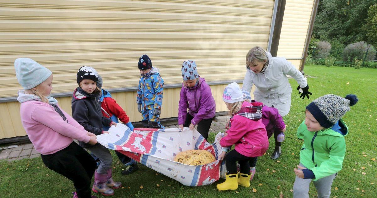 Peedu lapsed kasvatasid 72 kilo kõrvitsat