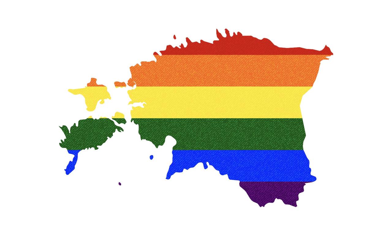 Malle Pärn: mida rohkem homoliikumisele järele anda, seda suuremaks lähevad nende nõudmised