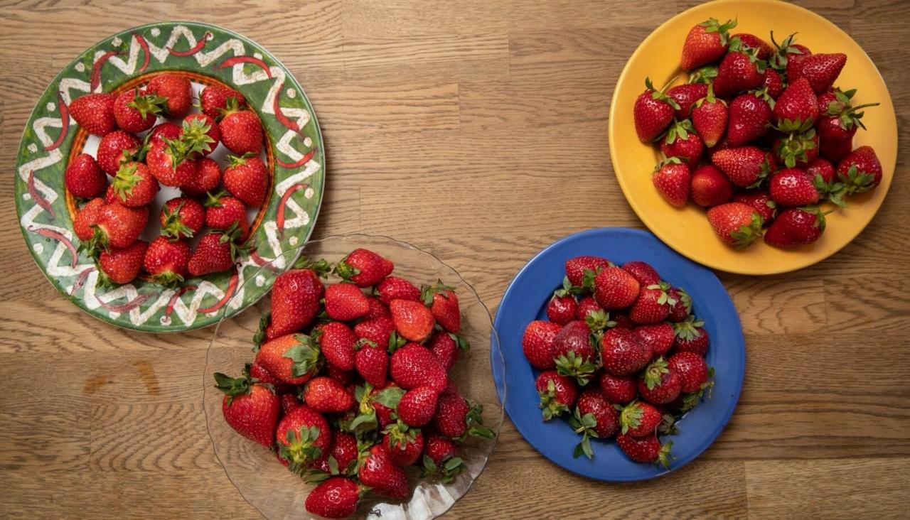 LUGEJA KIRI | Siiri Lehtmets: rahvusriik vs mõni tonn maasikaid? Kas tõesti!?