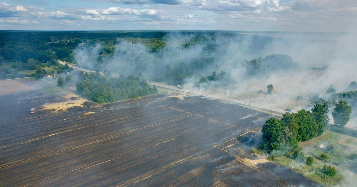 Leies hävitas tulekahju viljapõllu