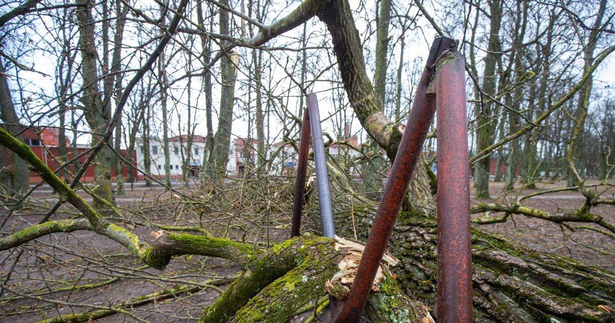 Ilmateenistus hoiatab tugeva tuule eest