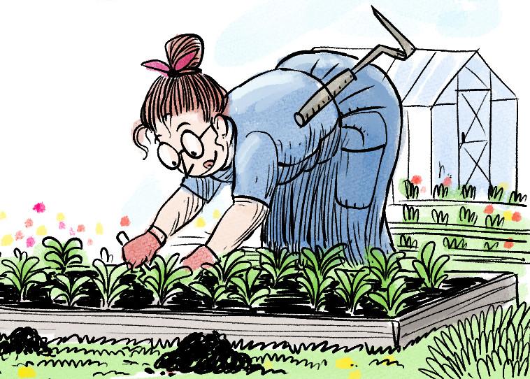 Aidi Valliku aiandusblogi: lõokannuste lõbu