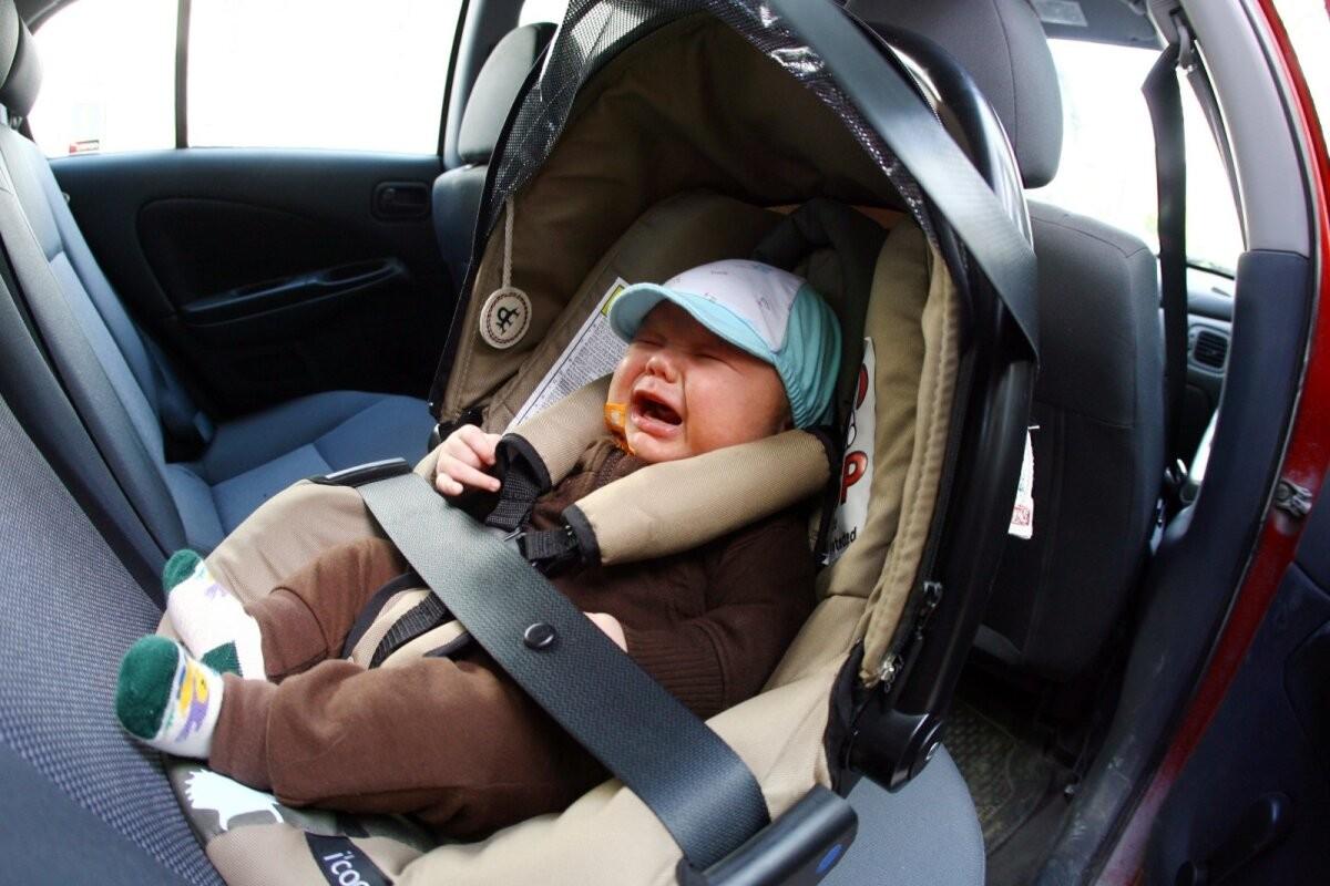 Häirekeskus tuletab meelde: lapsi ega loomi ei tohi mingil juhul palavaga üksi autosse jätta