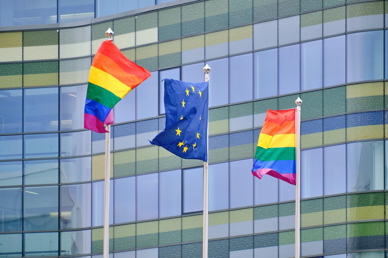 """Euroopa Parlament võttis vastu  """"homoõiguste"""" resolutsiooni: Eesti saadikutest ainsana vastu Madison, Terras erapooletu"""