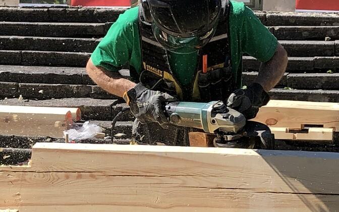 Ekspert: majavamm kimbutab eestkätt renoveeritud hooneid