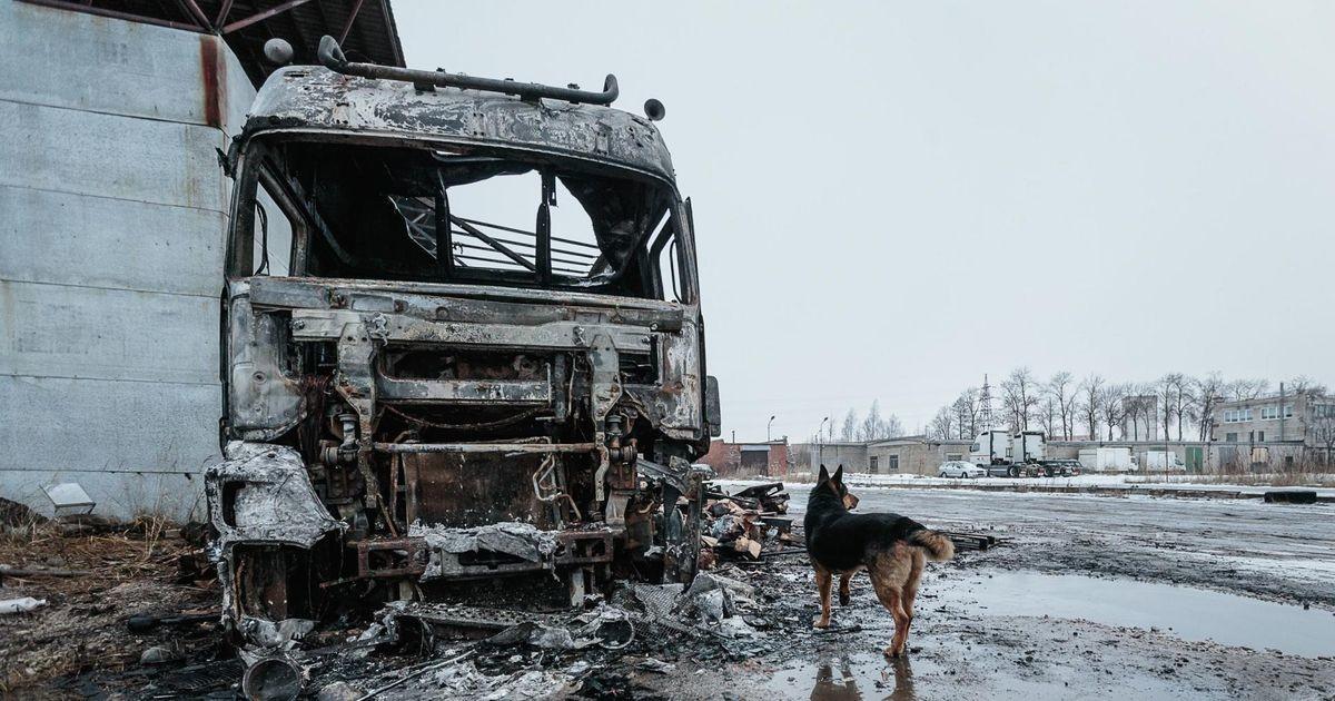 Narvas süüdatakse autosid, aga juhtumite vahel pole seost