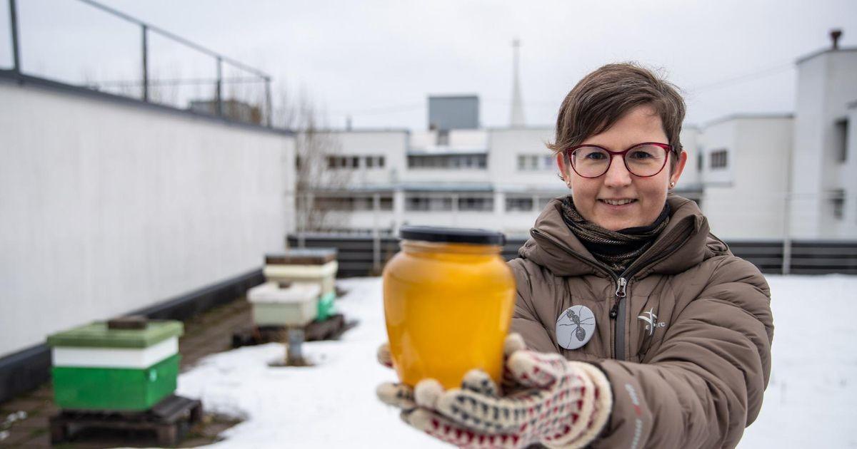 Rakvere riigigümnaasiumi hakkab juhtima loodusteadlane Liisa Puusepp
