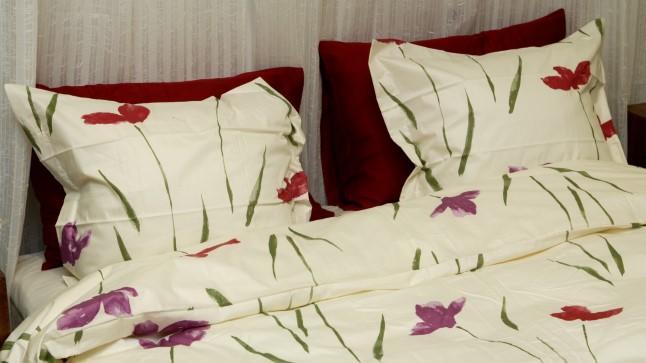 Lugejakiri | Puhtusefriigist mees kasutab voodis kutsikatele mõeldud linasid
