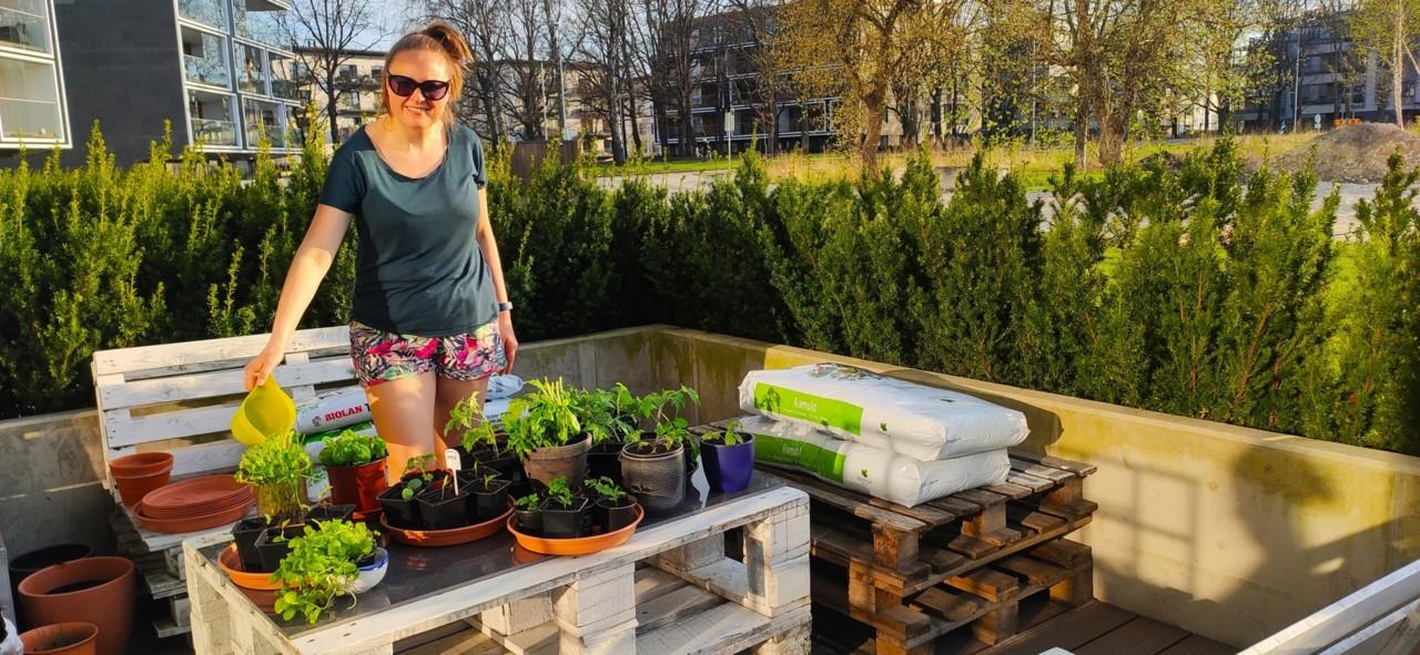 Noor Eesti naine peab kortermaja terrassil rikkalikku tarbeaeda