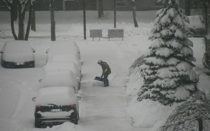 Ministeerium: lumerookimiskohustuse rakendamisel võiks olla paindlikum