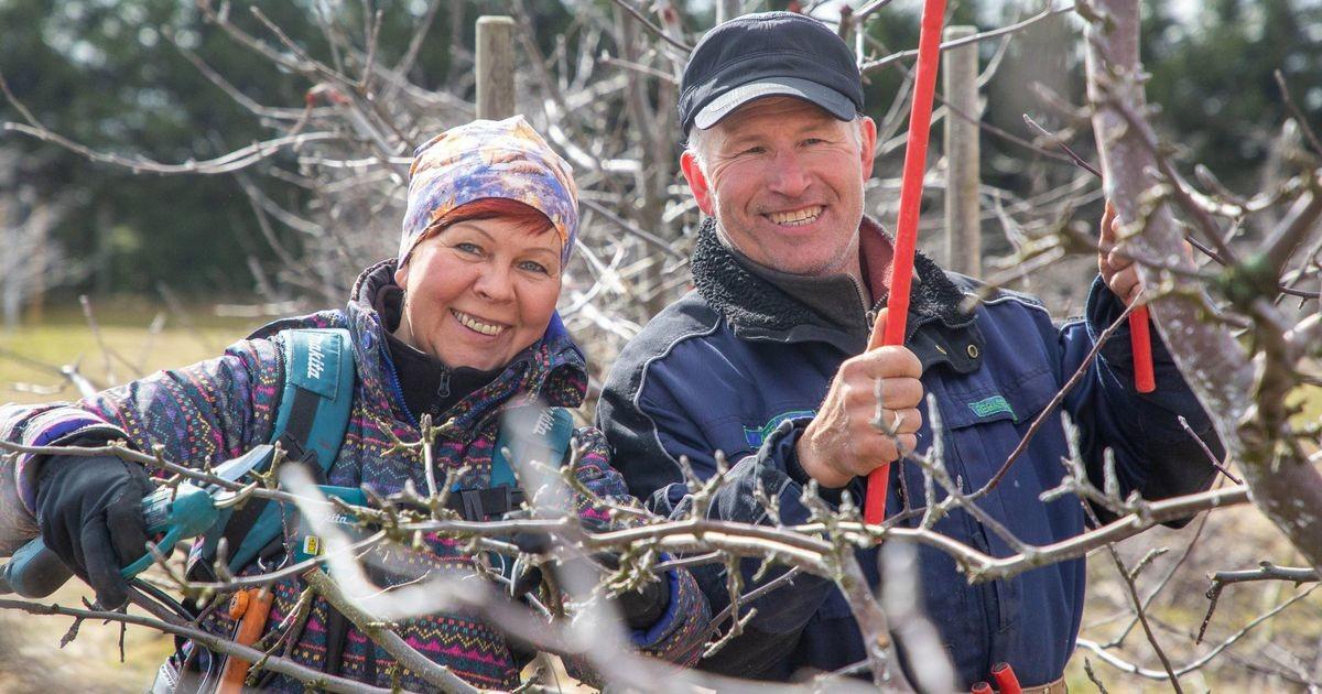 Põhja-Eesti maitsete aasta mekk ulatub ootamatult Järva valda