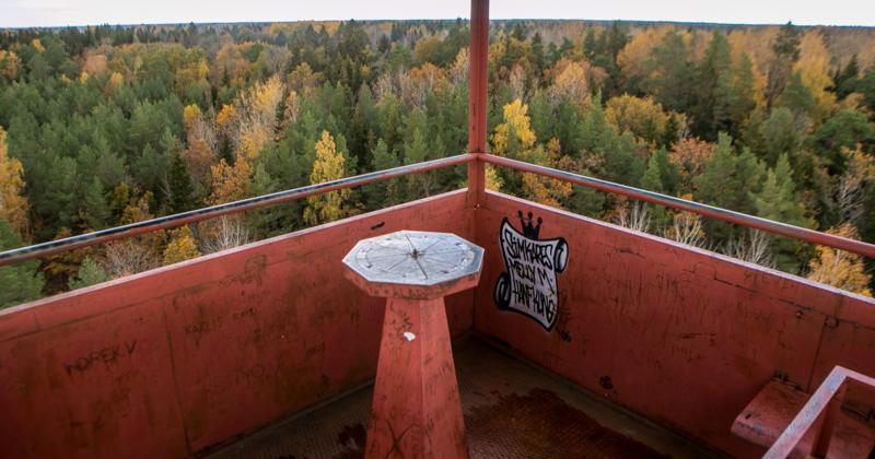 Saaremaa kõrgeima mäe vaatetorn saab uue näo